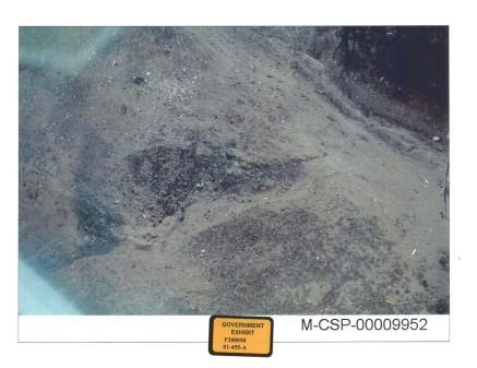 P200058_1